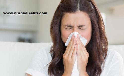 mencegah dan mengobati influenza